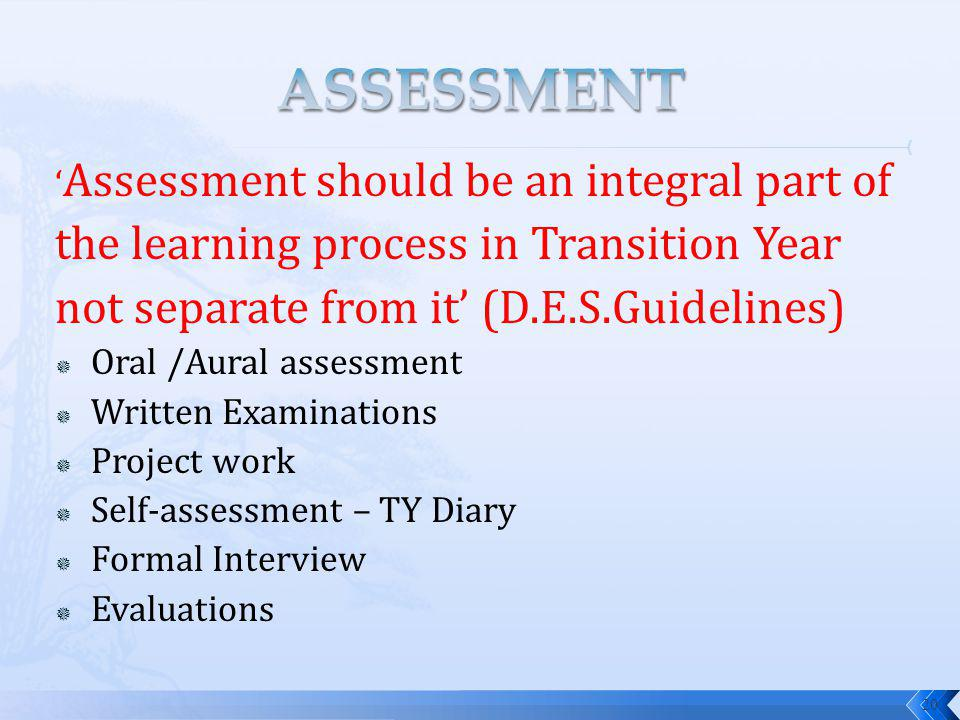 Assessment should be an integral part of the learning process in Transition Year not separate from it (D.E.S.Guidelines) Oral /Aural assessment Written Examinations Project work Self-assessment – TY Diary Formal Interview Evaluations 20