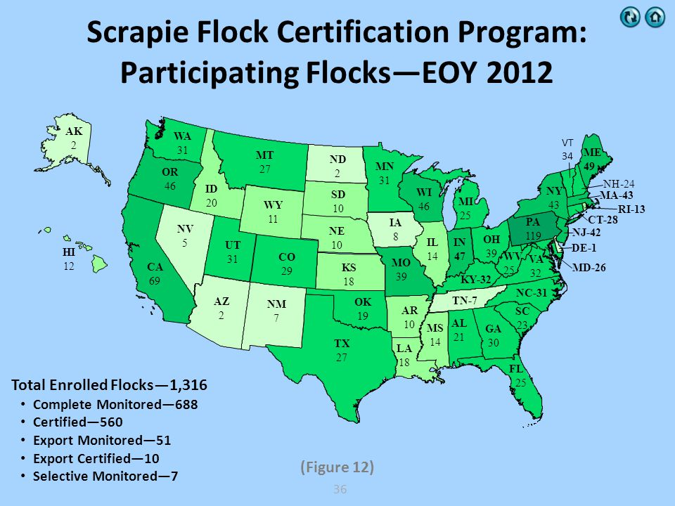 Scrapie Flock Certification Program: Participating FlocksEOY 2012 Total Enrolled Flocks1,316 Complete Monitored688 Certified560 Export Monitored51 Export Certified10 Selective Monitored7 (Figure 12) WY 11 WV 25 WI 46 WA 31 VA 32 UT 31 TX 27 TN-7 SD 10 SC 23 RI-13 PA 119 OR 46 OK 19 OH 39 NY 43 NV 5 NM 7 NJ-42 NE 10 ND 2 NC-31 MT 27 MS 14 MO 39 MN 31 MI 25 ME 49 MD-26 MA-43 LA 18 KY-32 KS 18 IN 47 IL 14 ID 20 IA 8 HI 12 GA 30 FL 25 DE-1 CT-28 CO 29 CA 69 AZ 2 AR 10 AK 2 AL 21 VT 34 NH-24 36