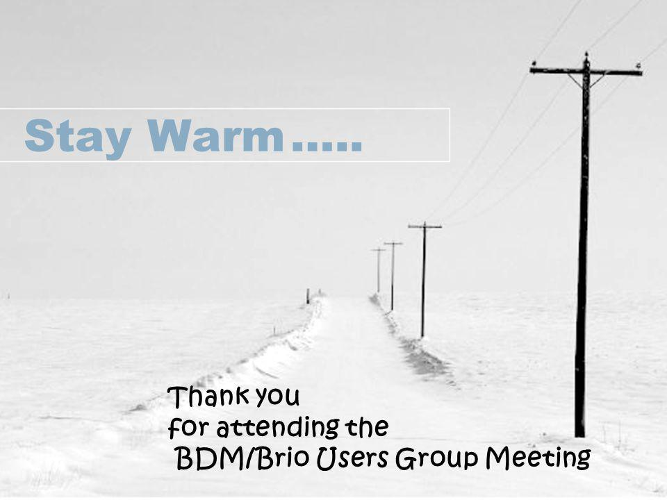 Stay Warm….. Thank you for attending the BDM/Brio Users Group Meeting