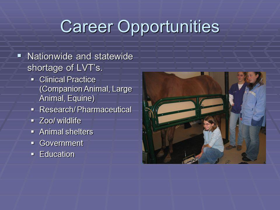 Career Opportunities Nationwide and statewide shortage of LVTs. Nationwide and statewide shortage of LVTs. Clinical Practice (Companion Animal, Large