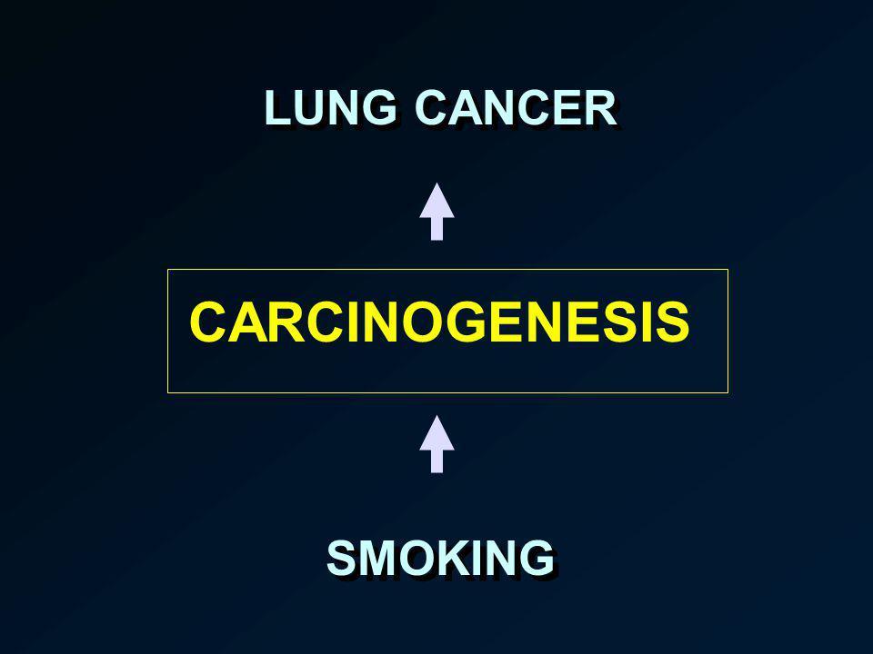 LUNG CANCER CARCINOGENESIS SMOKING