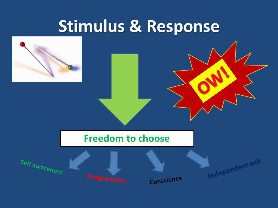 Stimulus & Response Freedom to choose Self awareness Imagination Conscience Independent will