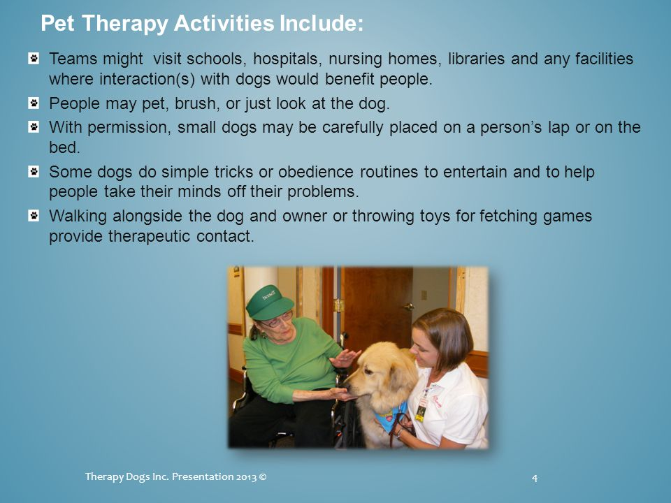 Teams might visit schools, hospitals, nursing homes, libraries and any facilities where interaction(s) with dogs would benefit people.
