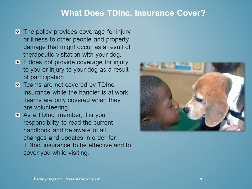 Therapy Dogs Inc. Presentation 2013 ©8 What Does TDInc.