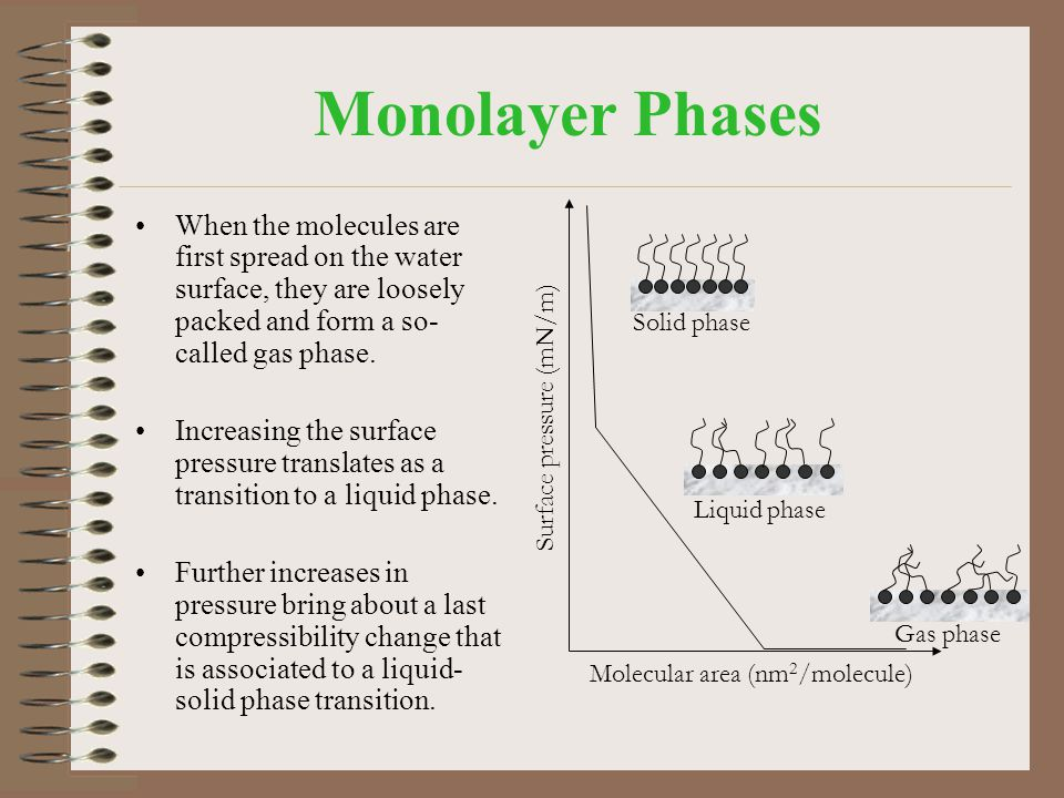 Monolayer Phases When the molecules are first spread on the water surface, they are loosely packed and form a so- called gas phase. Increasing the sur