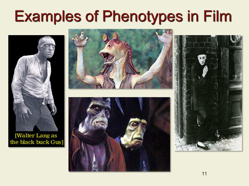 11 Examples of Phenotypes in Film