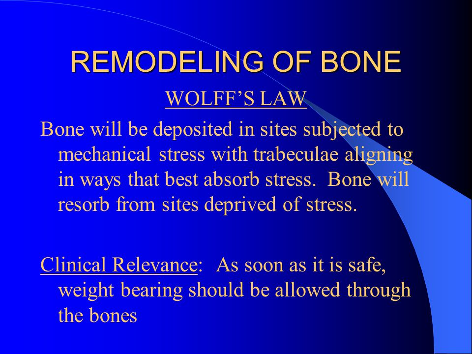 REMODELING OF BONE WOLFFS LAW Bone will be deposited in sites subjected to mechanical stress with trabeculae aligning in ways that best absorb stress.