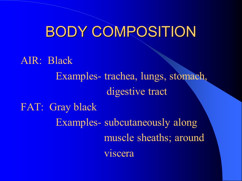 BODY COMPOSITION AIR: Black Examples- trachea, lungs, stomach, digestive tract FAT: Gray black Examples- subcutaneously along muscle sheaths; around v