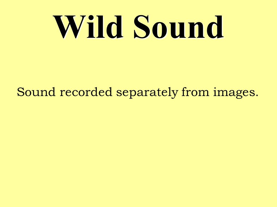 Wild Sound Sound recorded separately from images.