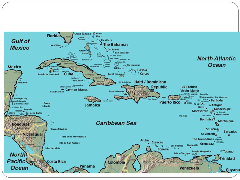 PRIMER FORO SOBRE LOS SERVICIOS AUDIOVISUALES EN EL EPA: OPORTUNIDADES Y RETOS DEL SECTOR NACIONAL Jueves 29 de Julio del 2010 2010, DOMINICAN REPUBLI