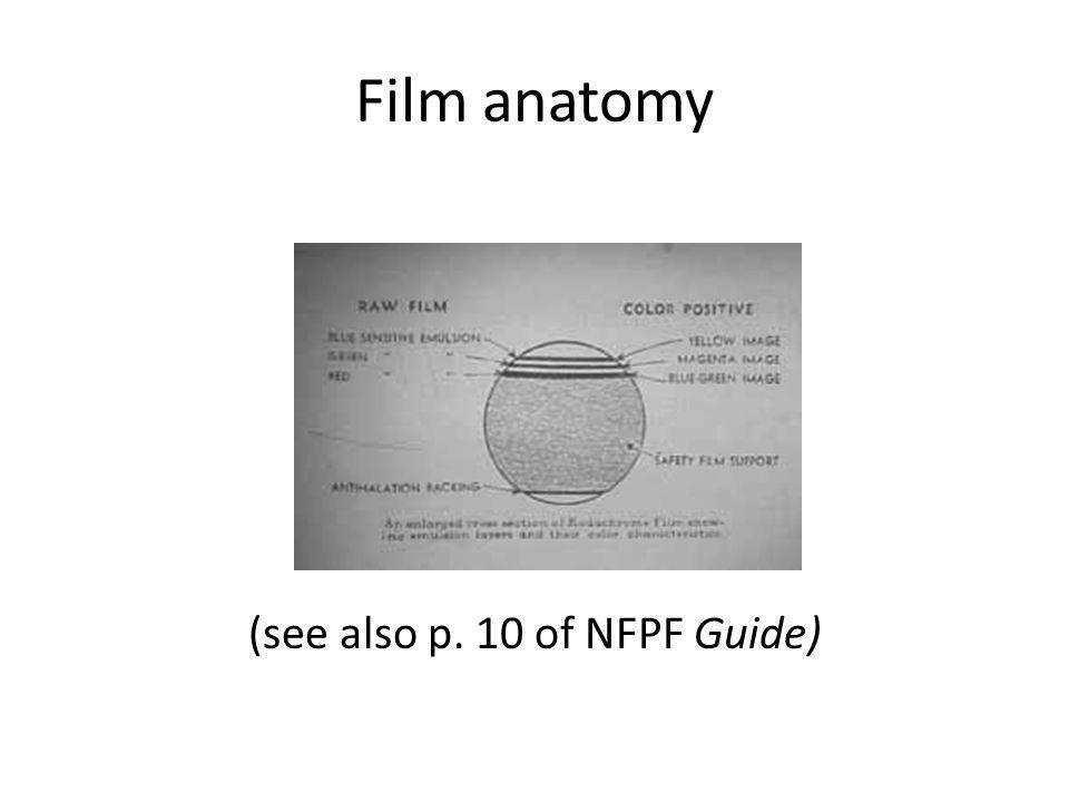 Film anatomy (see also p. 10 of NFPF Guide)