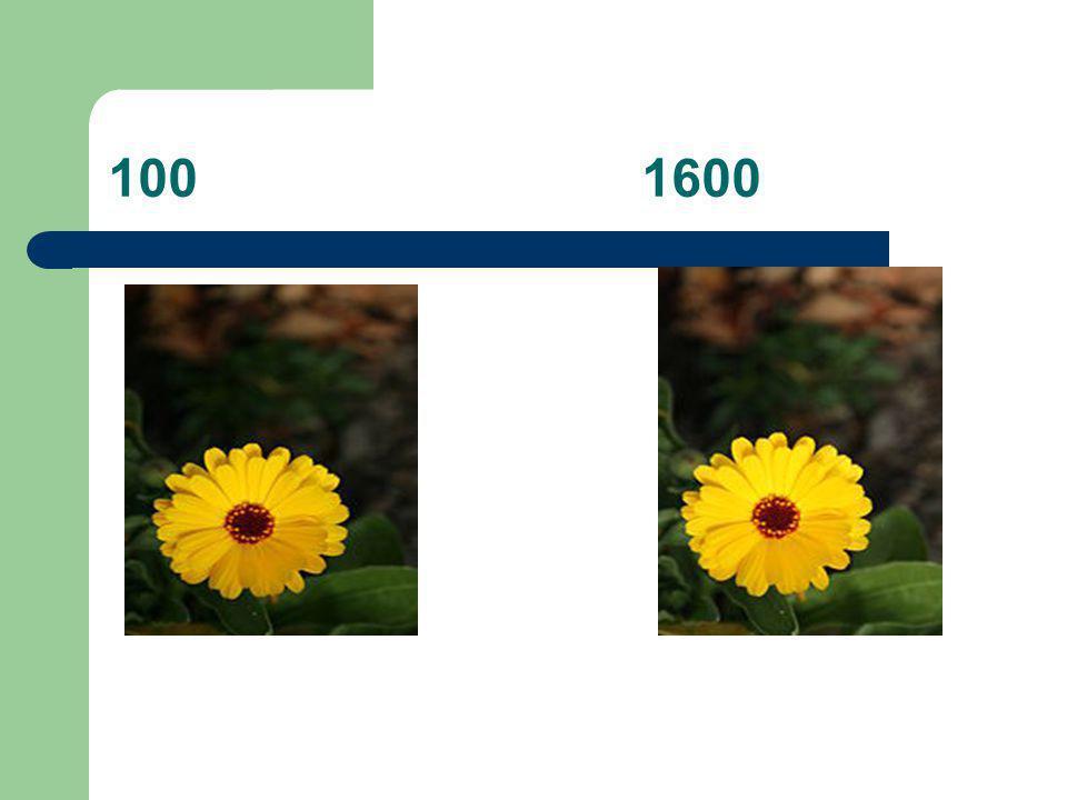1001600