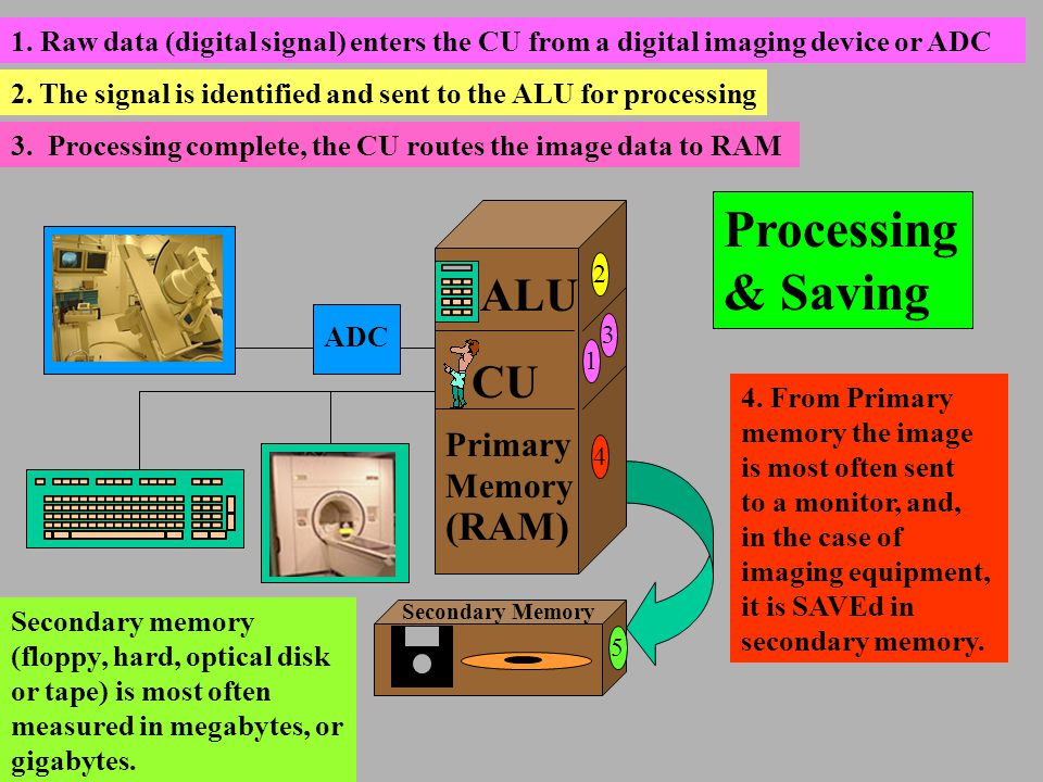 Processing & Saving ALU CU Primary Memory (RAM) ADC 1 2 3 4 5 Secondary Memory 1. Raw data (digital signal) enters the CU from a digital imaging devic