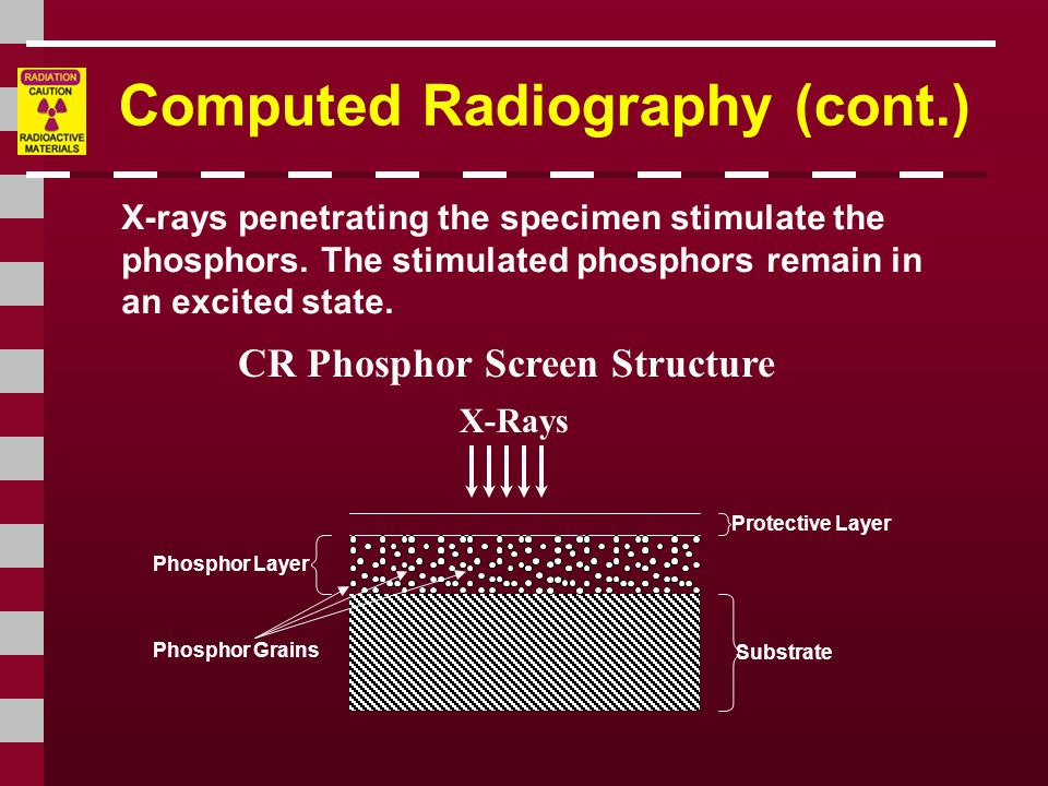 Computed Radiography (cont.) CR Phosphor Screen Structure X-rays penetrating the specimen stimulate the phosphors.