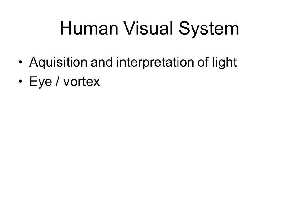 Human Visual System Aquisition and interpretation of light Eye / vortex