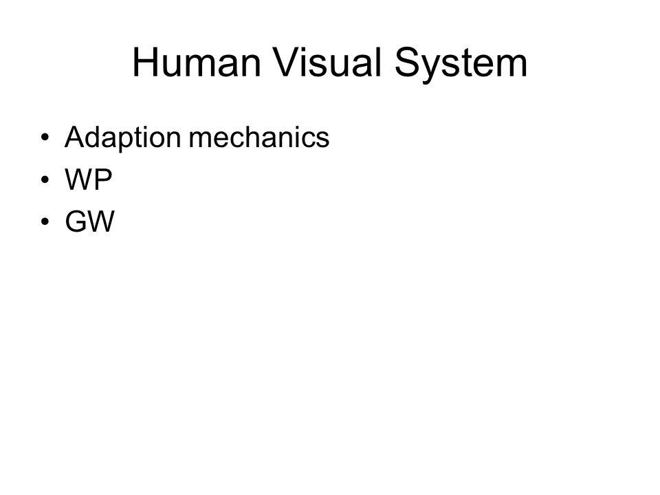 Human Visual System Adaption mechanics WP GW