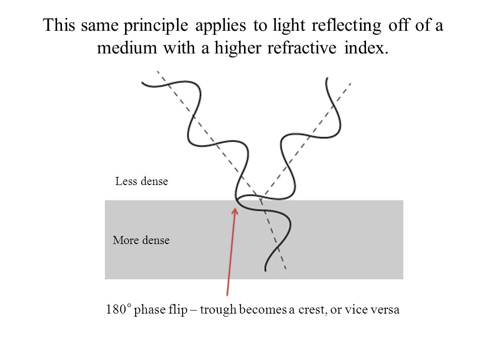 Less dense More dense This same principle applies to light reflecting off of a medium with a higher refractive index. 180° phase flip – trough becomes