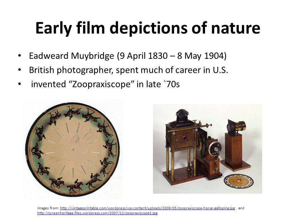 Early film depictions of nature Eadweard Muybridge (9 April 1830 – 8 May 1904) British photographer, spent much of career in U.S.
