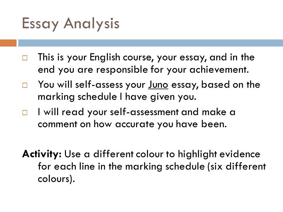 analysis of movies essay