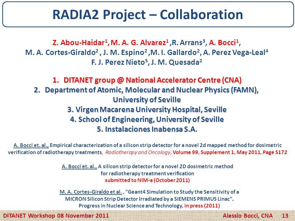 Z. Abou-Haidar 1, M. A. G. Alvarez 1,R. Arrans 3, A. Bocci 1, M. A. Cortes-Giraldo 2, J. M. Espino 2,M. I. Gallardo 2, A. Perez Vega-Leal 4 F. J. Pere