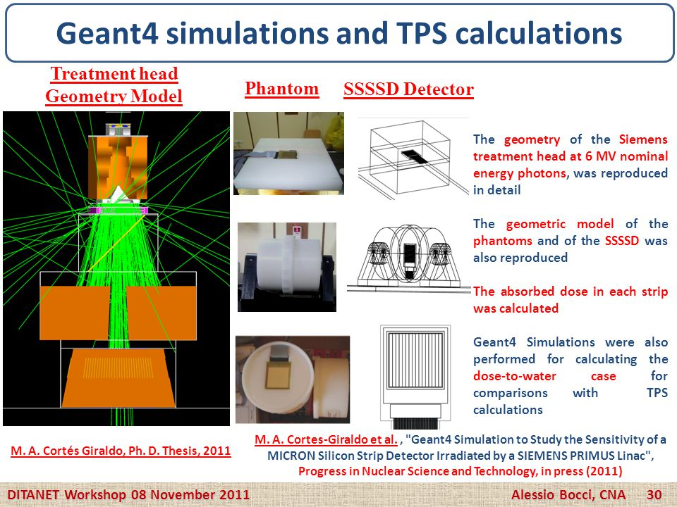 DITANET Workshop 08 November 2011 Alessio Bocci, CNA 30 Geant4 simulations and TPS calculations Treatment head Geometry Model Phantom SSSSD Detector M