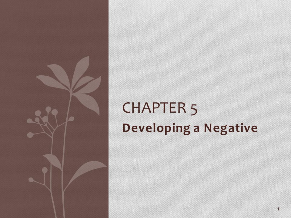 Developing a Negative CHAPTER 5 1