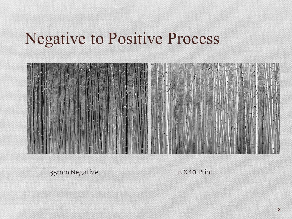 Negative to Positive Process 2 35mm Negative 8 X 10 Print