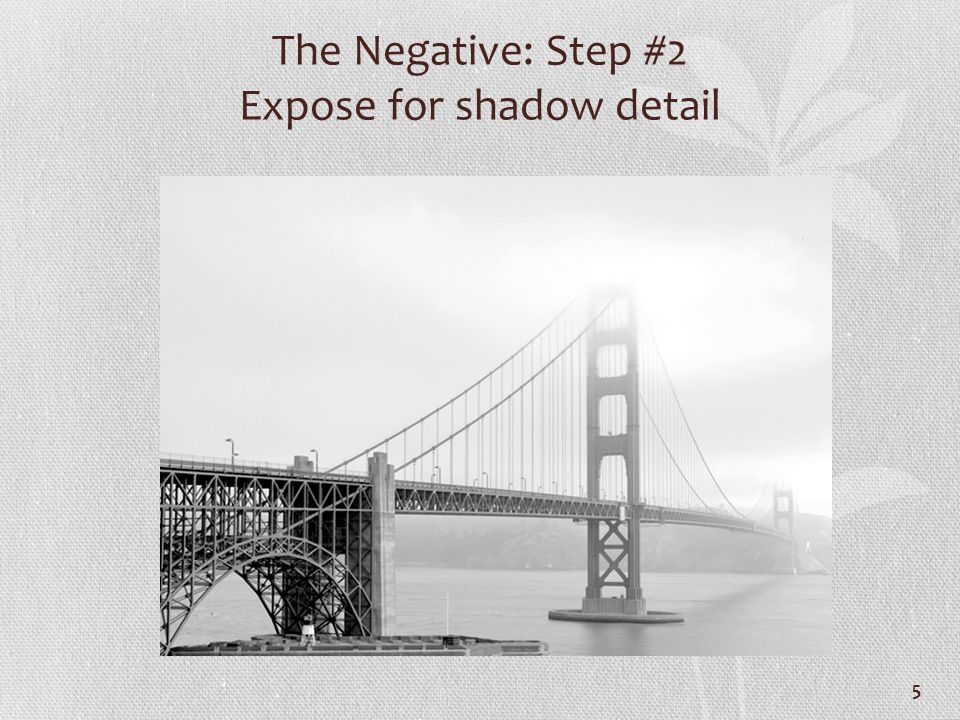 The Negative: Step #2 Expose for shadow detail 5