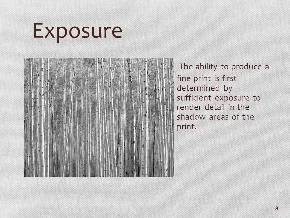 Exposure The ability to produce a fine print is first determined by sufficient exposure to render detail in the shadow areas of the print. 8