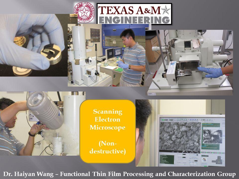 Scanning Electron Microscope (Non- destructive)