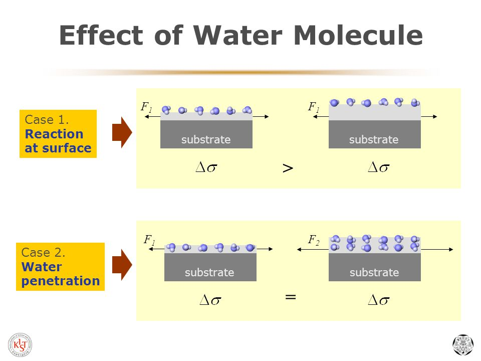 Effect of Water Molecule F1F1 F1F1 > F2F2 = substrate F1F1 Case 1.