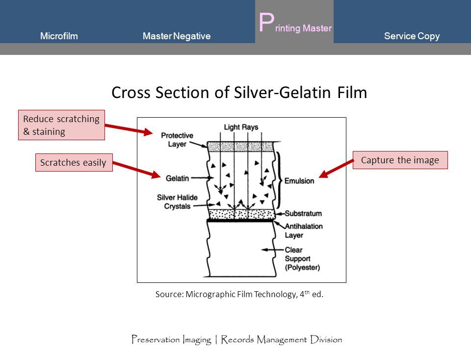 Service CopyMicrofilm P rinting Master Master Negative Cross Section of Silver-Gelatin Film Source: Micrographic Film Technology, 4 th ed. Reduce scra