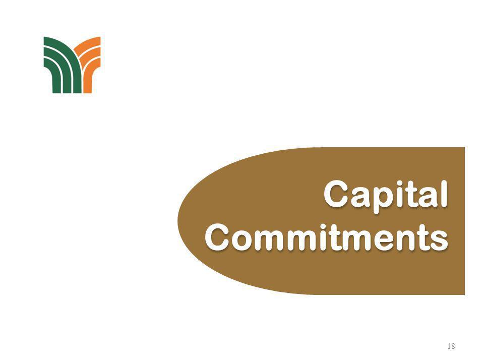18 Capital Commitments Capital Commitments