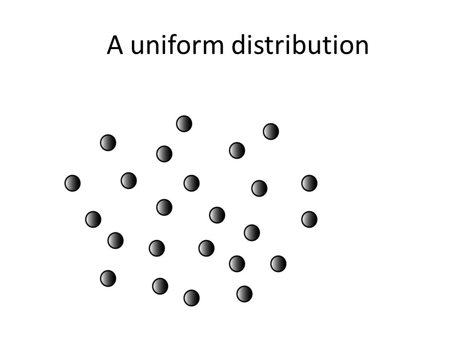 A uniform distribution