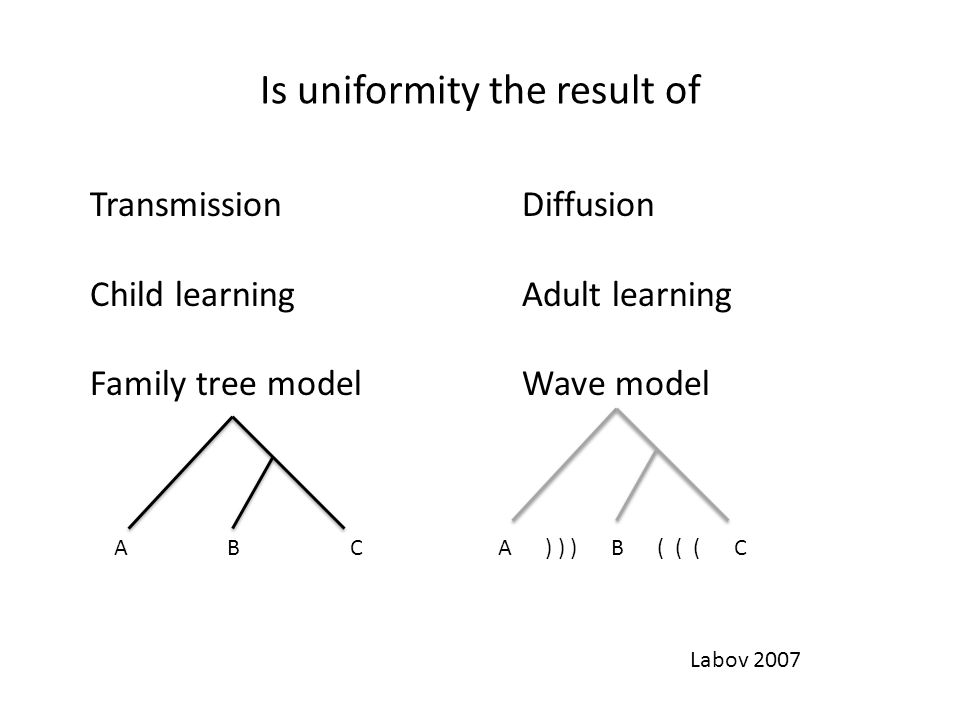 Is uniformity the result of TransmissionDiffusion Child learningAdult learning Family tree modelWave model A B CA ) ) ) B ( ( ( C Labov 2007