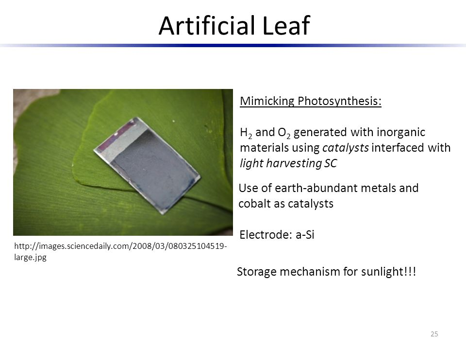 Artificial Leaf 25 http://images.sciencedaily.com/2008/03/080325104519- large.jpg Mimicking Photosynthesis: H 2 and O 2 generated with inorganic mater