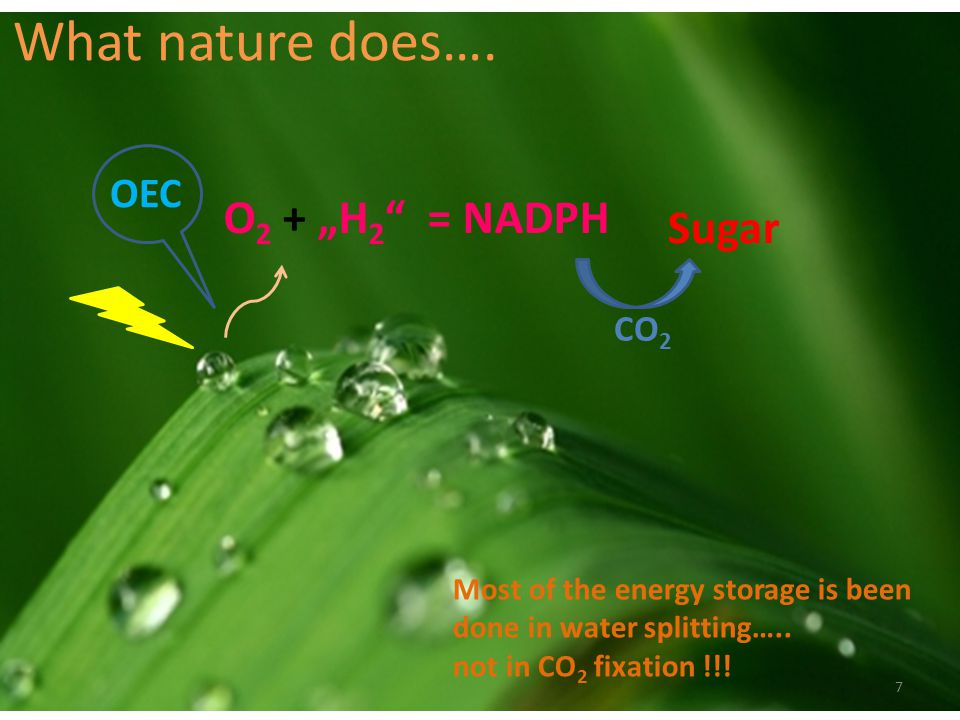 What nature does…. O 2 + H 2 = NADPH Sugar CO 2 Most of the energy storage is been done in water splitting….. not in CO 2 fixation !!! 7 OEC
