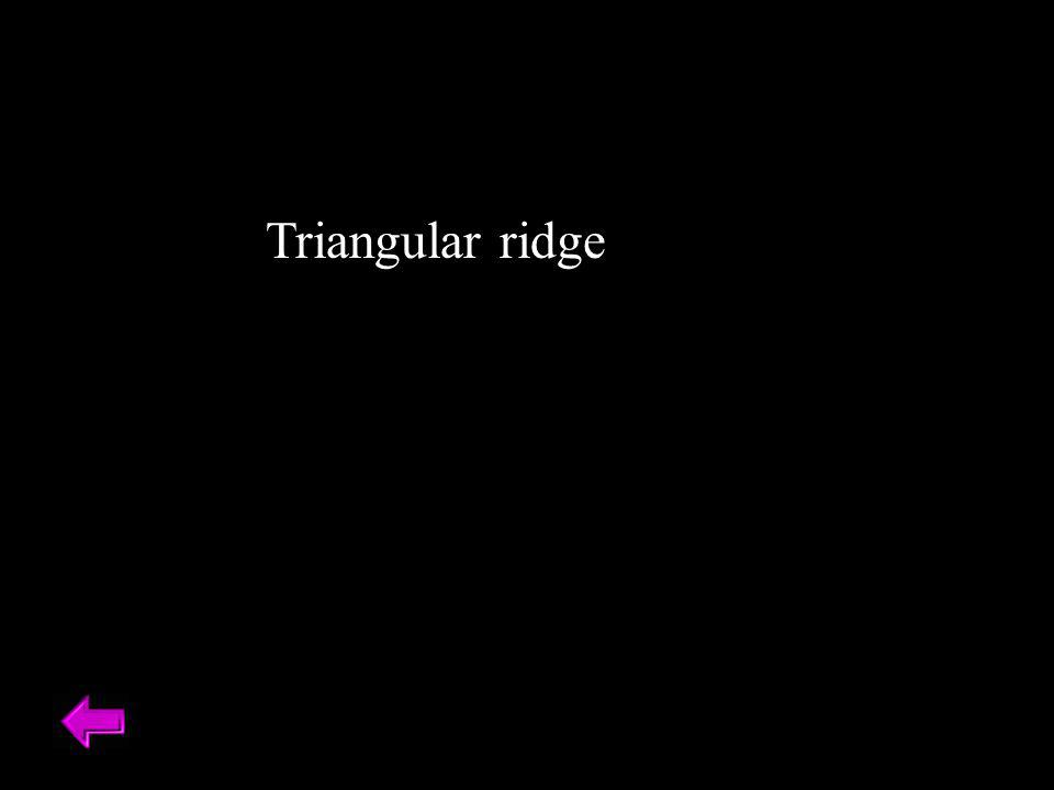 Triangular ridge
