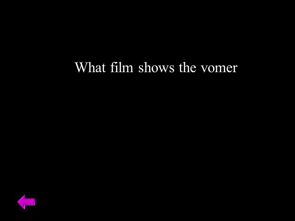 What film shows the vomer