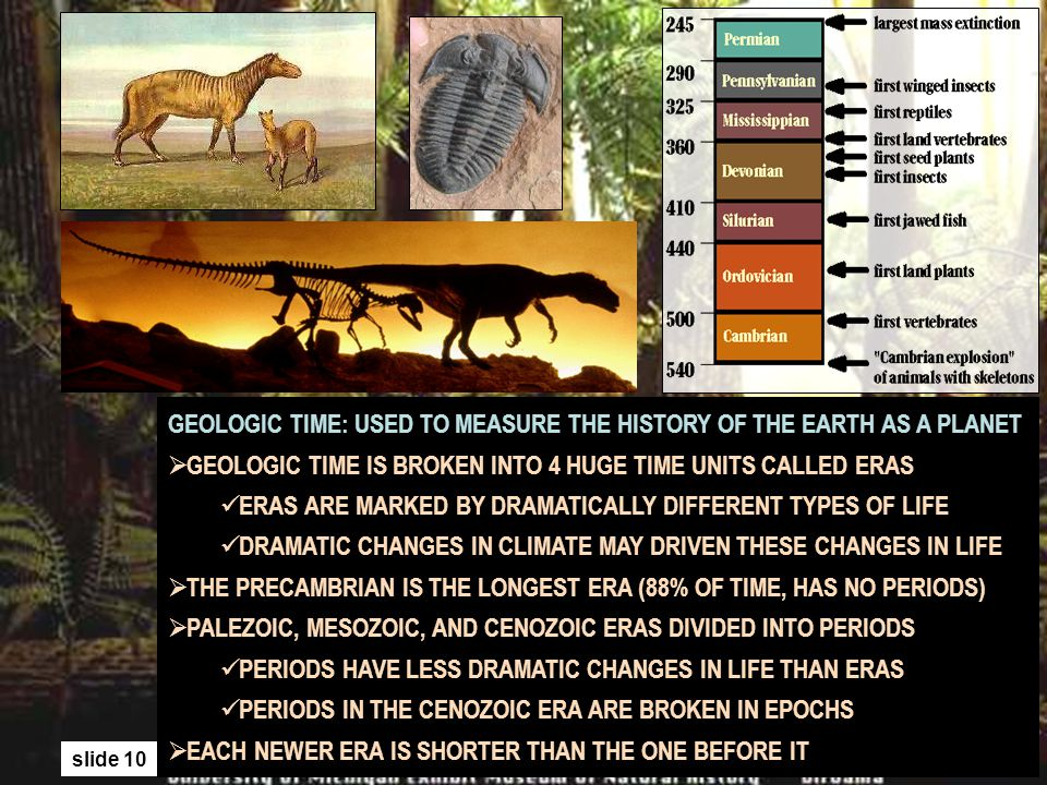 slide 10 GEOLOGIC TIME: USED TO MEASURE THE HISTORY OF THE EARTH AS A PLANET GEOLOGIC TIME IS BROKEN INTO 4 HUGE TIME UNITS CALLED ERAS ERAS ARE MARKE