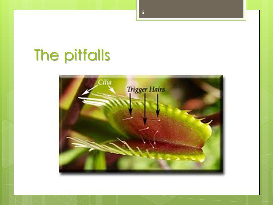 The pitfalls 6