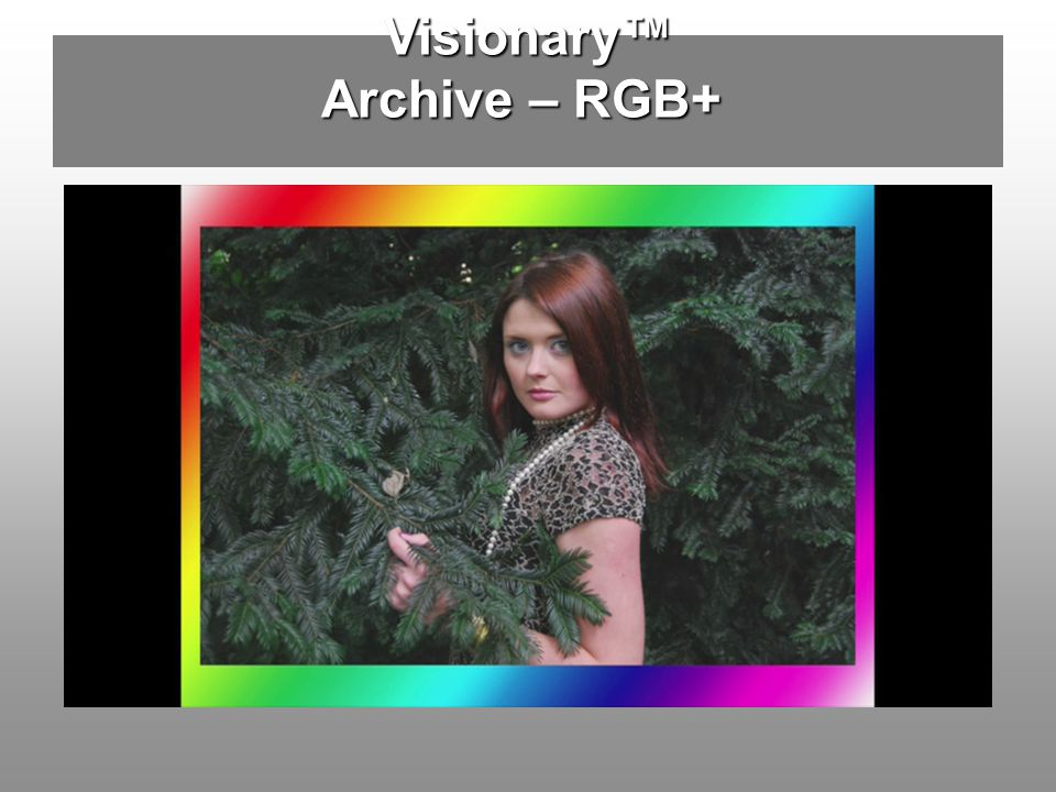 Visionary Archive – RGB+
