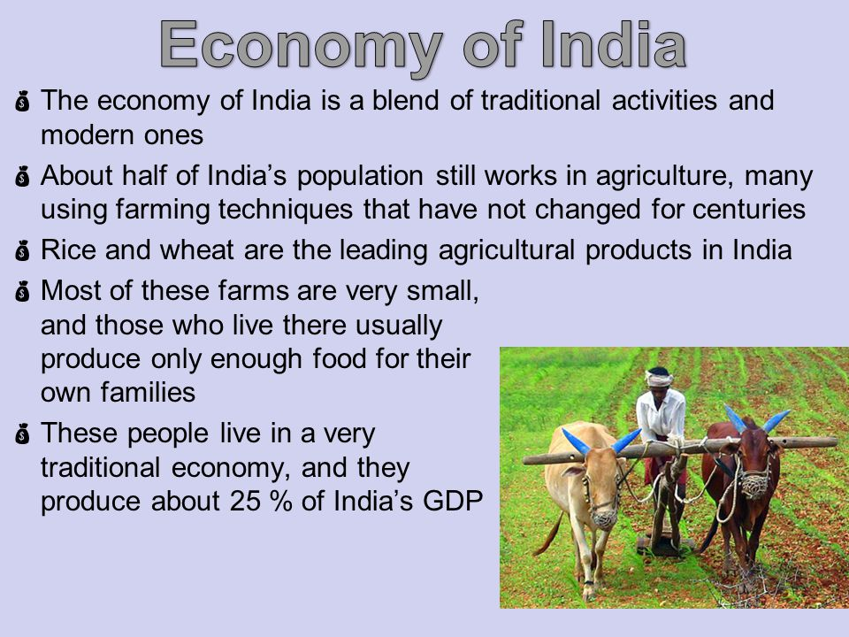 The economy of India is a blend of traditional activities and modern ones About half of Indias population still works in agriculture, many using farming techniques that have not changed for centuries Rice and wheat are the leading agricultural products in India Most of these farms are very small, and those who live there usually produce only enough food for their own families These people live in a very traditional economy, and they produce about 25 % of Indias GDP
