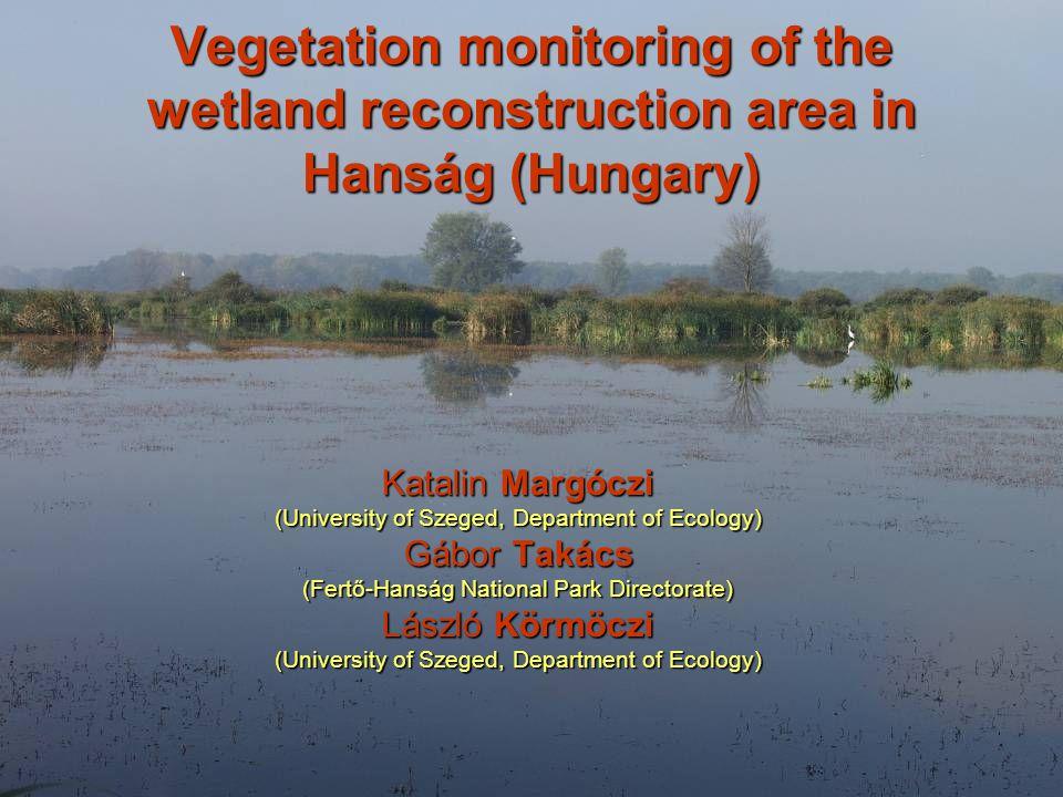 Vegetation monitoring of the wetland reconstruction area in Hanság (Hungary) Katalin Margóczi (University of Szeged, Department of Ecology) Gábor Takács (Fertő-Hanság National Park Directorate) László Körmöczi (University of Szeged, Department of Ecology)