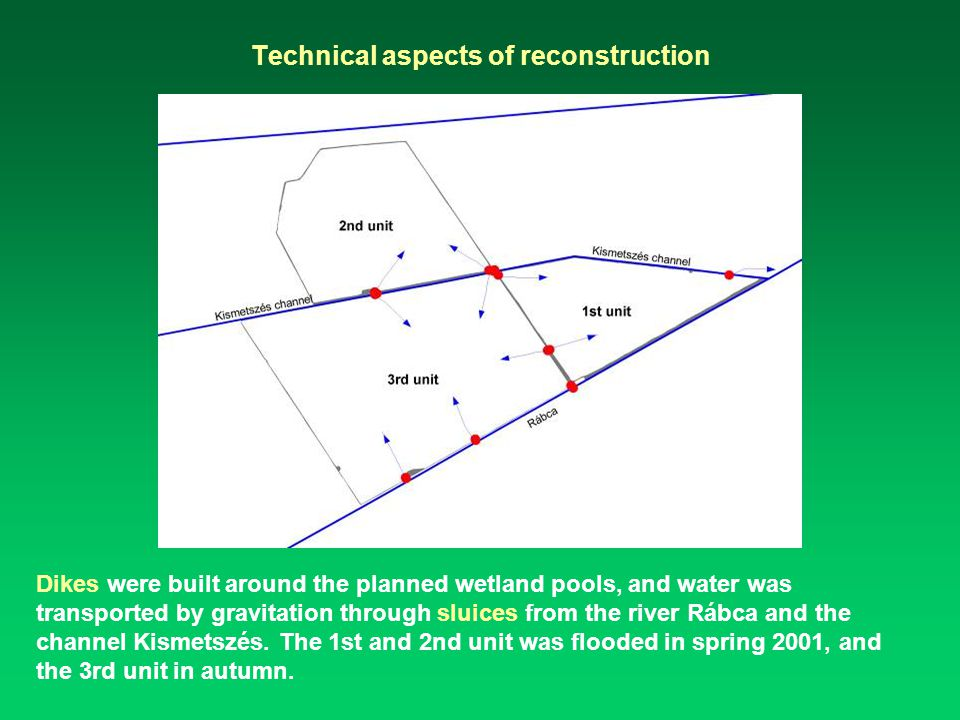 Technical aspects of reconstruction Dikes were built around the planned wetland pools, and water was transported by gravitation through sluices from the river Rábca and the channel Kismetszés.