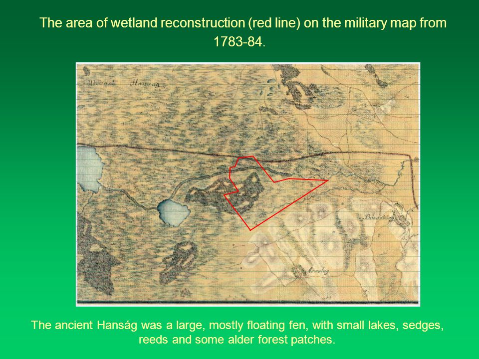 The area of wetland reconstruction (red line) on the military map from 1783-84.