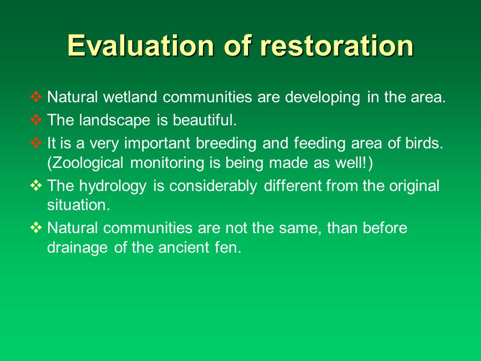Evaluation of restoration Natural wetland communities are developing in the area.