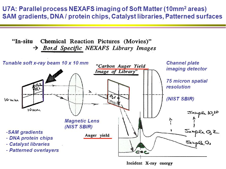 U7A: Parallel process NEXAFS imaging of Soft Matter (10mm 2 areas) SAM gradients, DNA / protein chips, Catalyst libraries, Patterned surfaces Magnetic Lens (NIST SBIR) Tunable soft x-ray beam 10 x 10 mm -SAM gradients - DNA protein chips - Catalyst libraries - Patterned overlayers Channel plate imaging detector 75 micron spatial resolution (NIST SBIR)