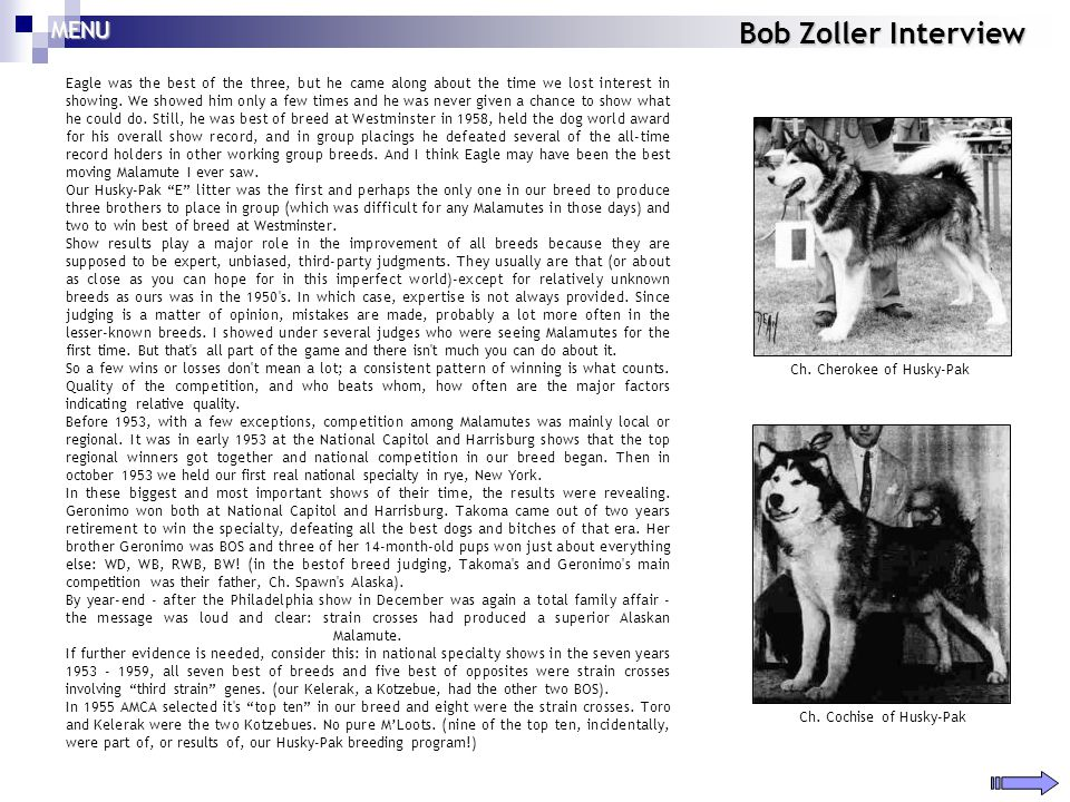 Bob Zoller Interview Eagle was the best of the three, but he came along about the time we lost interest in showing. We showed him only a few times and