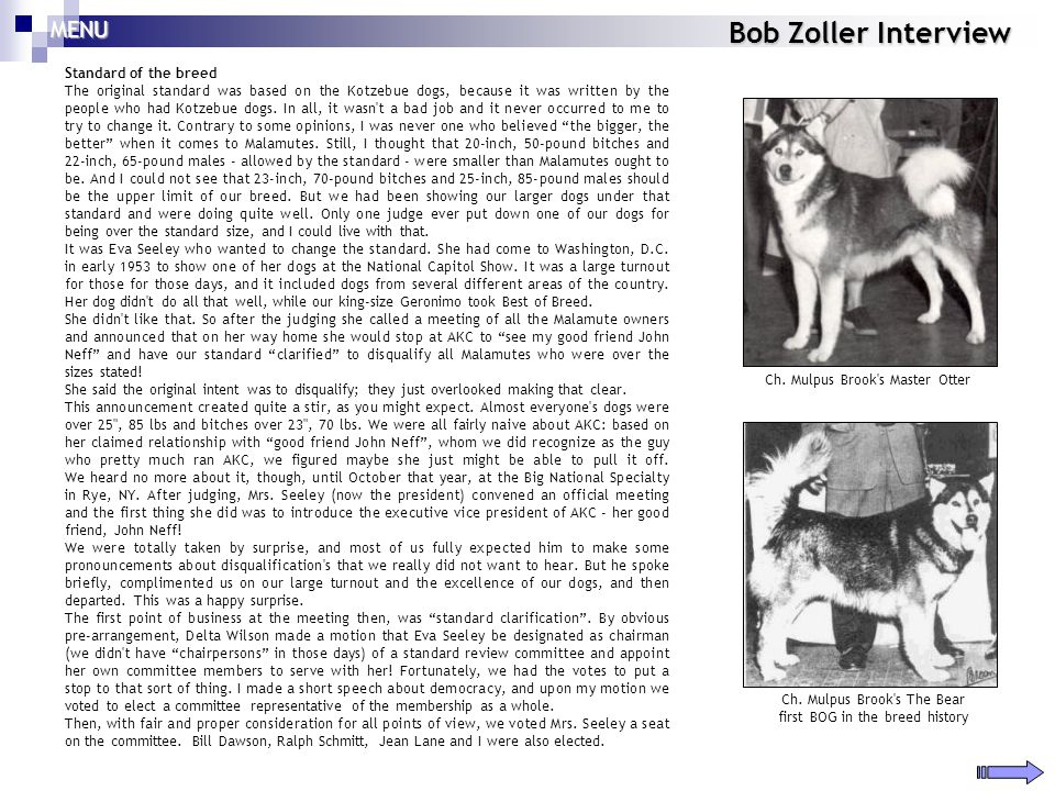 Bob Zoller Interview Standard of the breed The original standard was based on the Kotzebue dogs, because it was written by the people who had Kotzebue